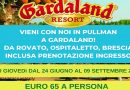 Vieni con noi in pullman a Gardaland! Ogni giovedì dal 24 Giugno al 9 Settembre 2021