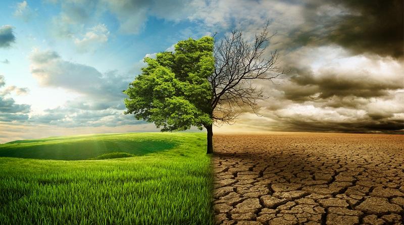 Giornata desertificazione, 7 lombardi su 10 preoccupati dal cambiamento climatico